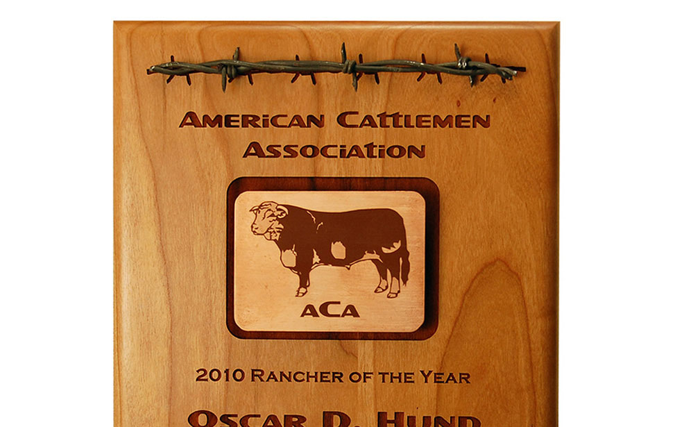Wooden Award with inlays and barbed wire